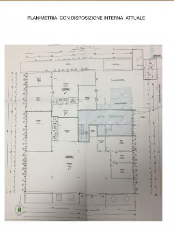 planimetria attuale rif443