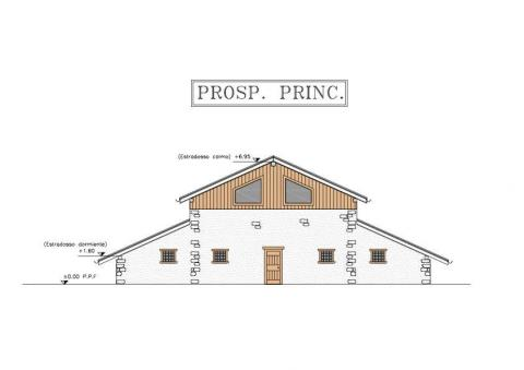 Planimetria prospetto principale 451